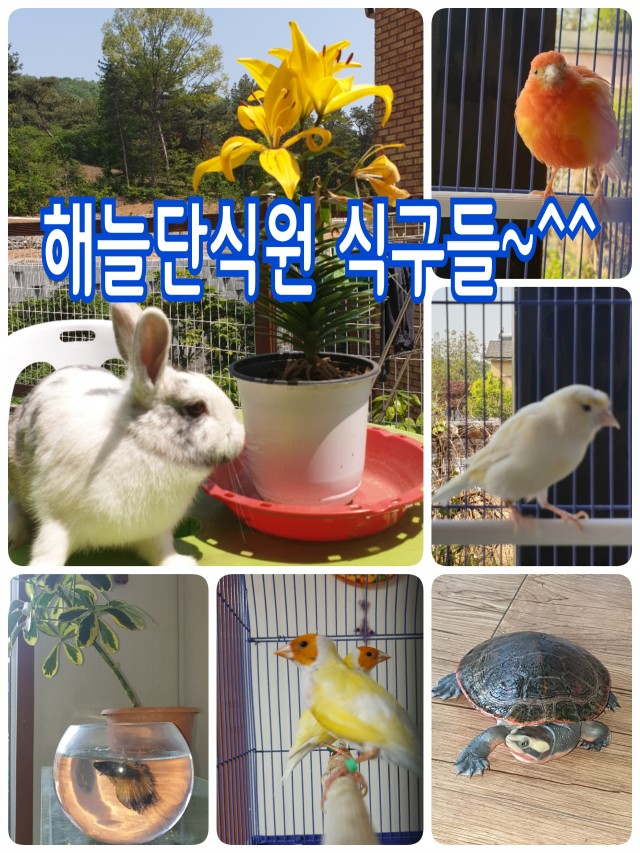 해늘 마음사랑단식원 식구들~~^^