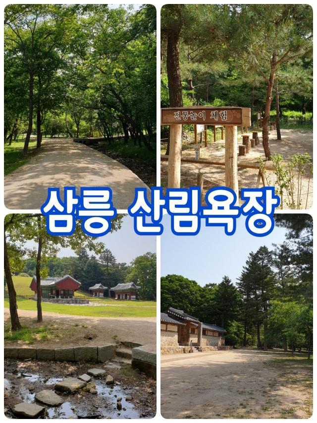 삼릉 산림욕장